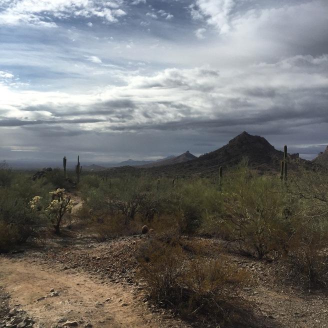 desertbeforestorm